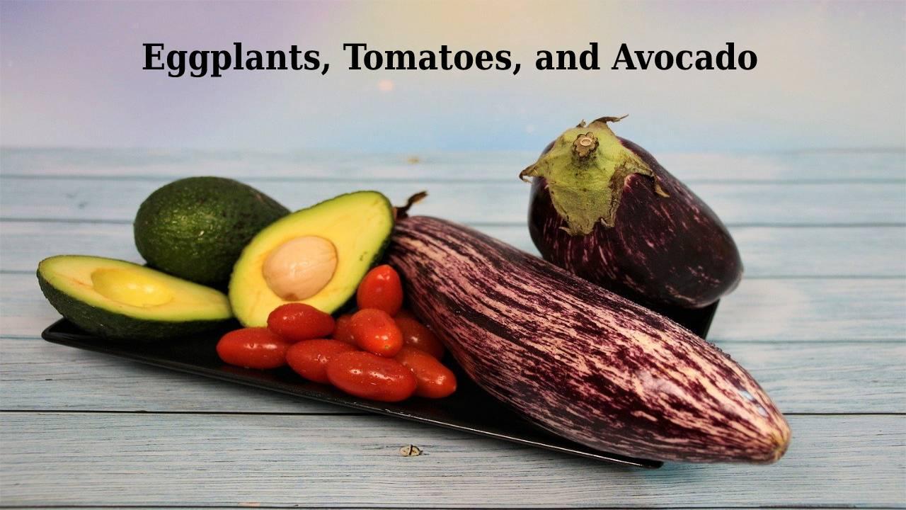 Eggplants, tomatoes, and avocado