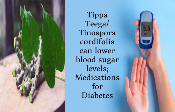 Tippa Teega (3)