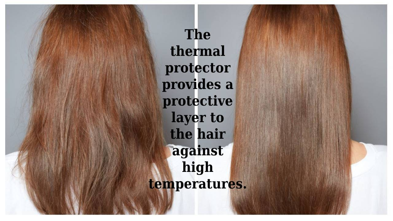What is the function of the thermal protector_